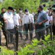 Gubernur Erzaldi Berharap Penangkaran Penyu Guntung Jadi Wisata Edukasi